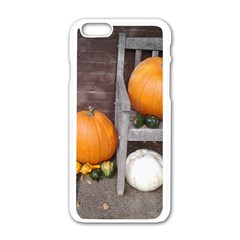 Pumpkins And Gourds Apple iPhone 6/6S White Enamel Case