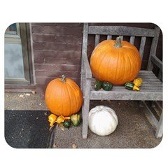 Pumpkins And Gourds Double Sided Flano Blanket (Medium)