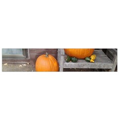 Pumpkins And Gourds Flano Scarf (Small)