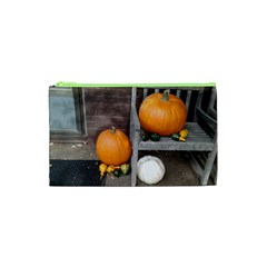 Pumpkins And Gourds Cosmetic Bag (XS)