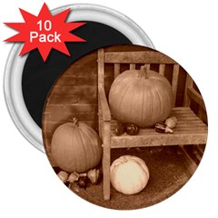 Pumpkins And Gourds Sepia 3  Magnets (10 pack)