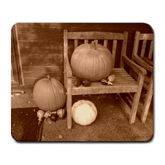 Pumpkins And Gourds Sepia Large Mousepads
