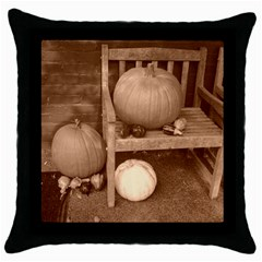 Pumpkins And Gourds Sepia Throw Pillow Case (Black)
