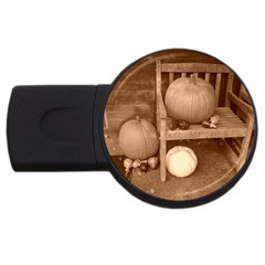 Pumpkins And Gourds Sepia USB Flash Drive Round (2 GB)