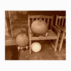 Pumpkins And Gourds Sepia Small Glasses Cloth (2-Side)