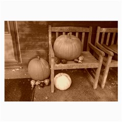 Pumpkins And Gourds Sepia Large Glasses Cloth