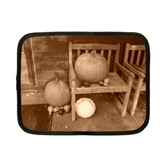 Pumpkins And Gourds Sepia Netbook Case (Small)