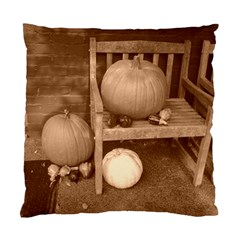 Pumpkins And Gourds Sepia Standard Cushion Case (Two Sides)