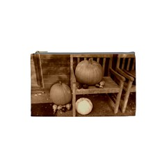 Pumpkins And Gourds Sepia Cosmetic Bag (Small)
