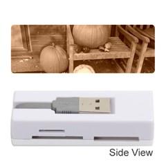 Pumpkins And Gourds Sepia Memory Card Reader (Stick)