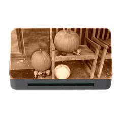 Pumpkins And Gourds Sepia Memory Card Reader with CF
