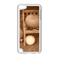 Pumpkins And Gourds Sepia Apple iPod Touch 5 Case (White)