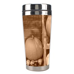 Pumpkins And Gourds Sepia Stainless Steel Travel Tumblers
