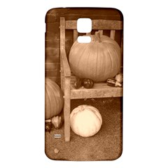 Pumpkins And Gourds Sepia Samsung Galaxy S5 Back Case (White)