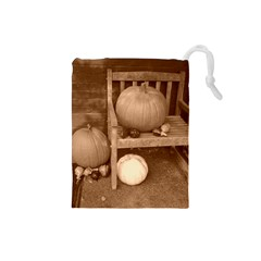 Pumpkins And Gourds Sepia Drawstring Pouches (Small)