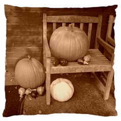 Pumpkins And Gourds Sepia Large Flano Cushion Case (One Side)