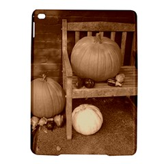 Pumpkins And Gourds Sepia iPad Air 2 Hardshell Cases