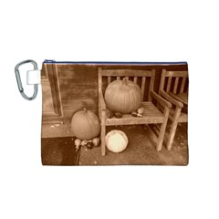 Pumpkins And Gourds Sepia Canvas Cosmetic Bag (M)