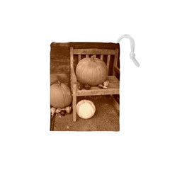 Pumpkins And Gourds Sepia Drawstring Pouches (XS)