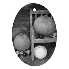 Pumpkind And Gourds Bw Ornament (Oval)