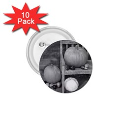 Pumpkind And Gourds Bw 1.75  Buttons (10 pack)