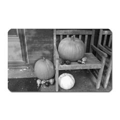 Pumpkind And Gourds Bw Magnet (Rectangular)
