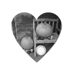 Pumpkind And Gourds Bw Heart Magnet