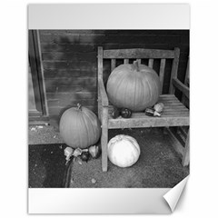Pumpkind And Gourds Bw Canvas 12  x 16