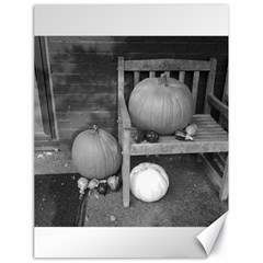 Pumpkind And Gourds Bw Canvas 18  x 24