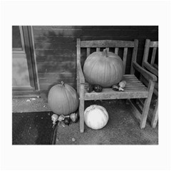 Pumpkind And Gourds Bw Small Glasses Cloth (2-Side)