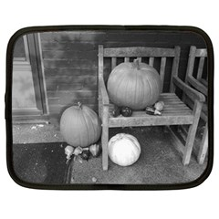 Pumpkind And Gourds Bw Netbook Case (Large)
