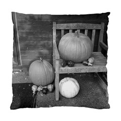 Pumpkind And Gourds Bw Standard Cushion Case (Two Sides)