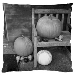 Pumpkind And Gourds Bw Large Cushion Case (Two Sides)