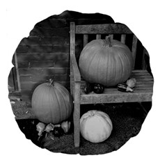 Pumpkind And Gourds Bw Large 18  Premium Round Cushions
