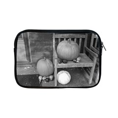 Pumpkind And Gourds Bw Apple iPad Mini Zipper Cases