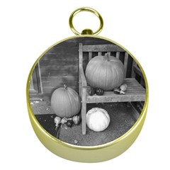 Pumpkind And Gourds Bw Gold Compasses