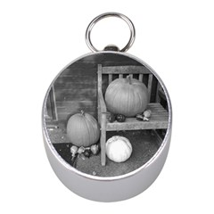 Pumpkind And Gourds Bw Mini Silver Compasses