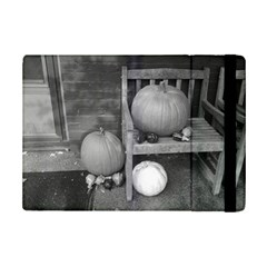 Pumpkind And Gourds Bw iPad Mini 2 Flip Cases