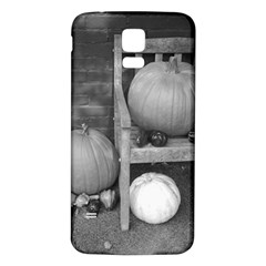 Pumpkind And Gourds Bw Samsung Galaxy S5 Back Case (White)