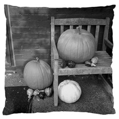 Pumpkind And Gourds Bw Large Flano Cushion Case (Two Sides)