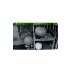 Pumpkind And Gourds Bw Cosmetic Bag (XS)