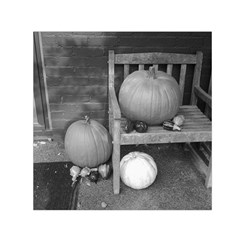 Pumpkind And Gourds Bw Small Satin Scarf (Square)