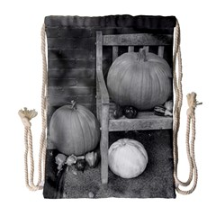 Pumpkind And Gourds Bw Drawstring Bag (Large)