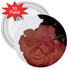 Poppys Last Rose Close Up 3  Buttons (10 pack)