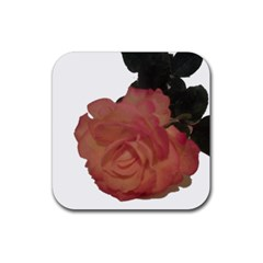 Poppys Last Rose Close Up Rubber Square Coaster (4 pack)