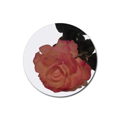 Poppys Last Rose Close Up Rubber Round Coaster (4 pack)