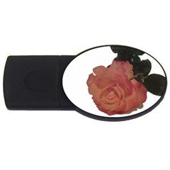 Poppys Last Rose Close Up USB Flash Drive Oval (4 GB)