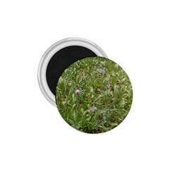 Pink Wildflowers 1.75  Magnets