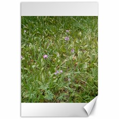 Pink Wildflowers Canvas 24  x 36