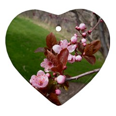 Pink Flowers  Ornament (Heart)